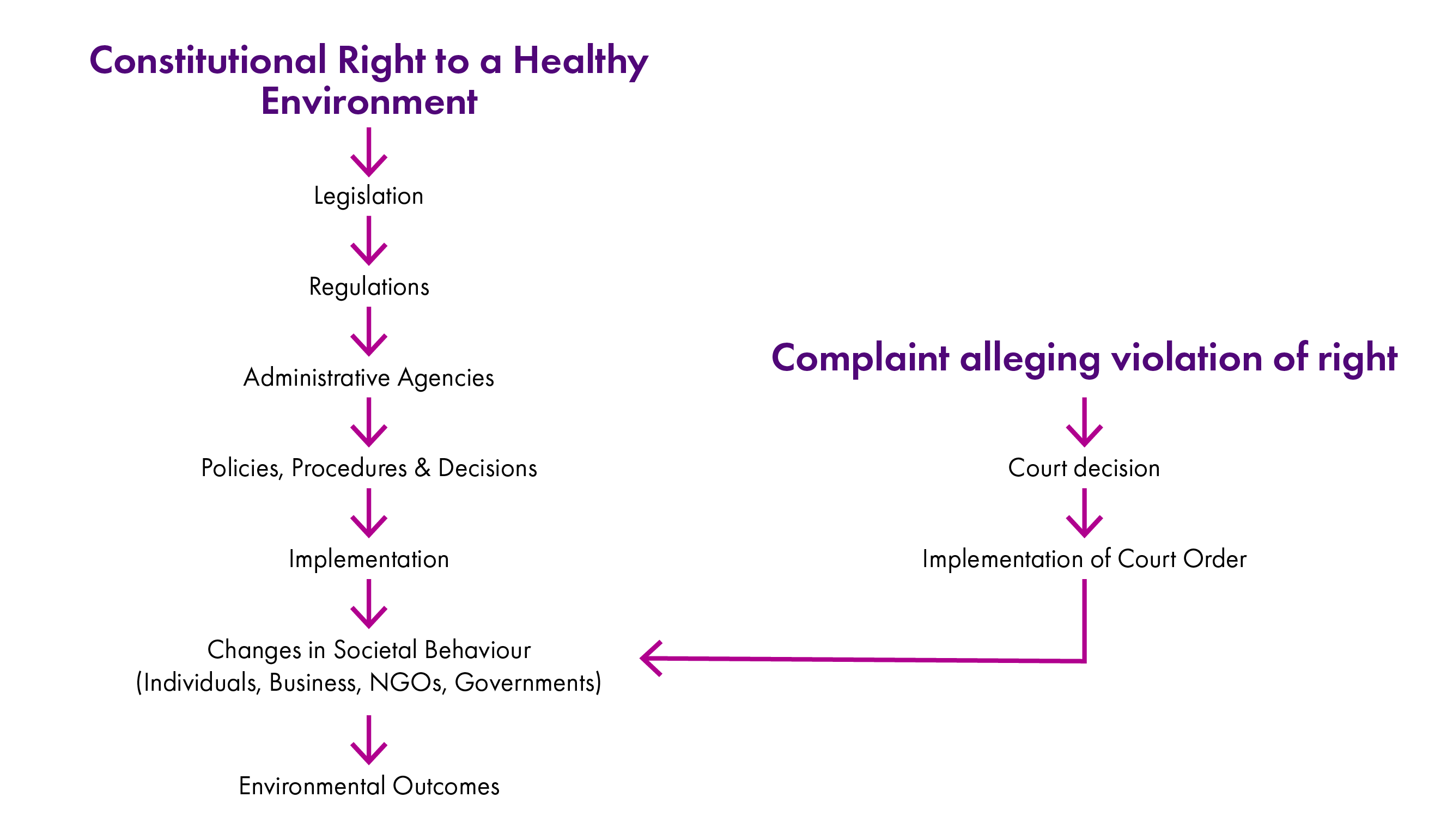Flowchart detailing sequence of events from a constitutional environmental right to environmental outcomes.