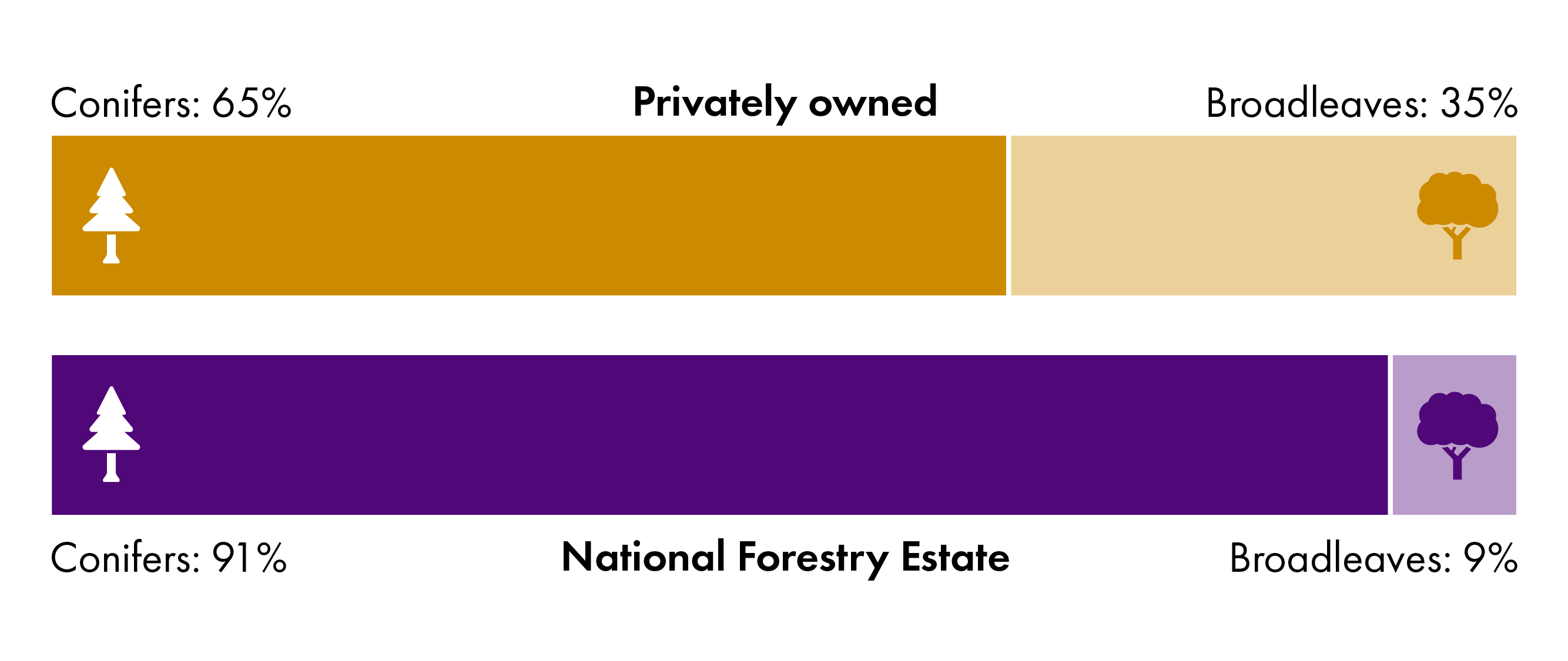 91% of Scotland's National Forest Estate woodlands are conifers with broadleaved species at 9%