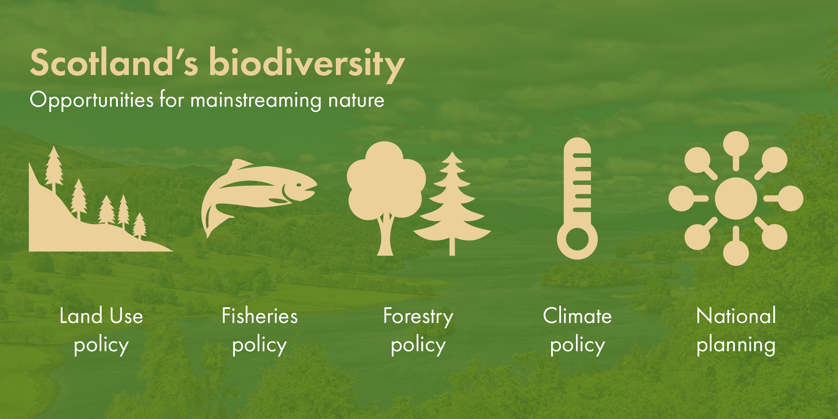Policy areas for biodiversity mainstreaming in Scotland: rural policy, fisheries, forestry policy, climate policy, national planning.