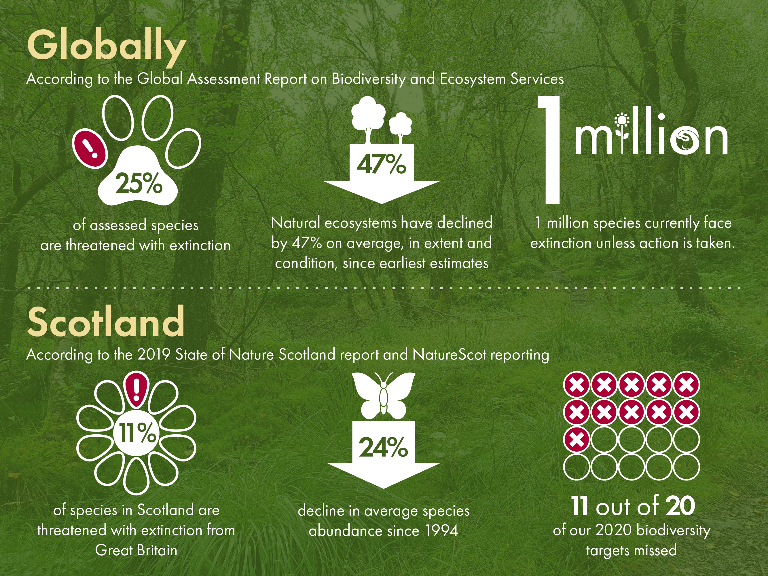 Key reports in recent years show nature is in decline in Scotland and globally.