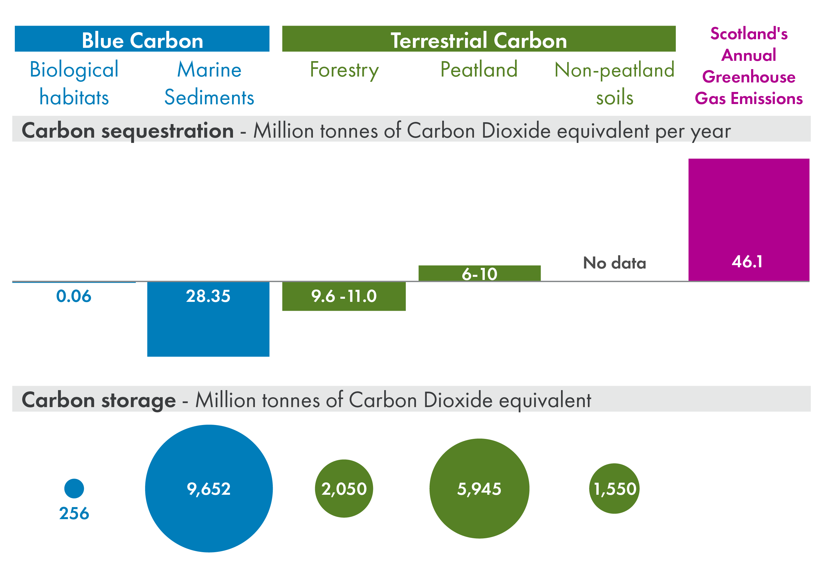 Infographic showing the carbon stored and annually sequestered (in megatonnes of carbon dioxide equivalent per year) in Scotland's blue carbon, split into biological habitats and marine sediments, and Scotland's terrestrial carbon, split into forestry, peatland and non-peatland soils. This is shown alongside Scotland's annual greenhouse gas emissions. Scotland's blue carbon environments store 9,636 megatonnes of carbon dioxide equivalent, which exceeds the carbon stored in Scotland's land-based ecosystems megatonnes of carbon dioxide