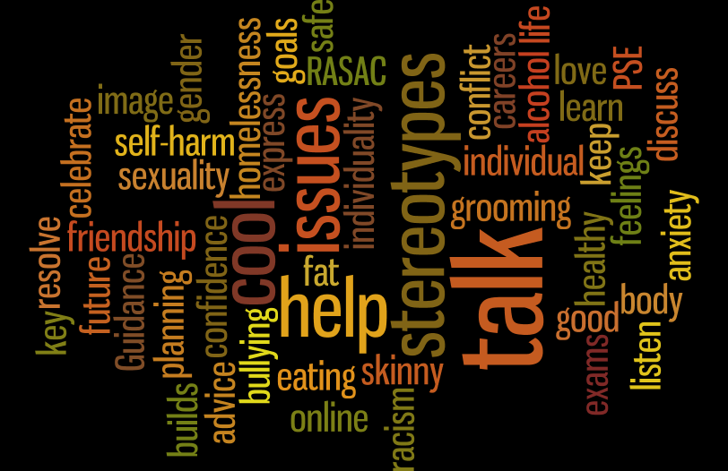 A Wordle representing the views of a PSE class on what PSE should be about.